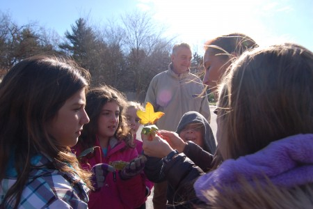 Nature Education