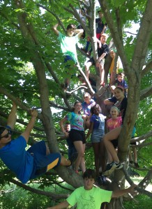 TDNC Kids in Tree